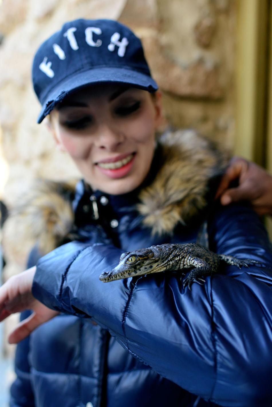 krokodyle w tunezji