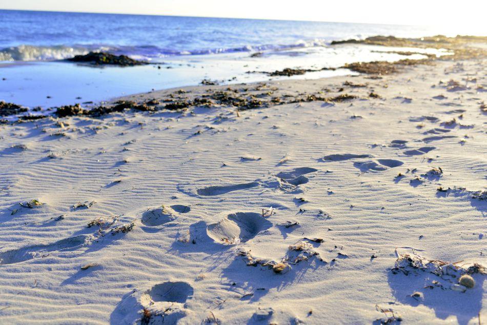 najlepsze plaże djerba