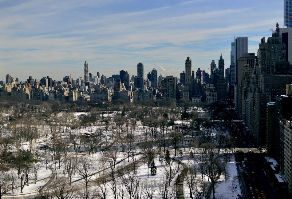 widok na central park z góry